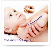 Arms and Hands Massage